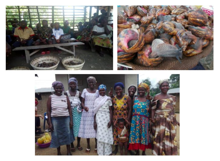 On the last for training, the participants were guided by someone from the district cooperative union to help them form a local union that could help in the financing and management of the snail business. Funds could be loaned to them and they could pay back at a convenient period. With the introduction of this all the participants (and including others present) were full of joy and were eager to beginning the snail businesses.