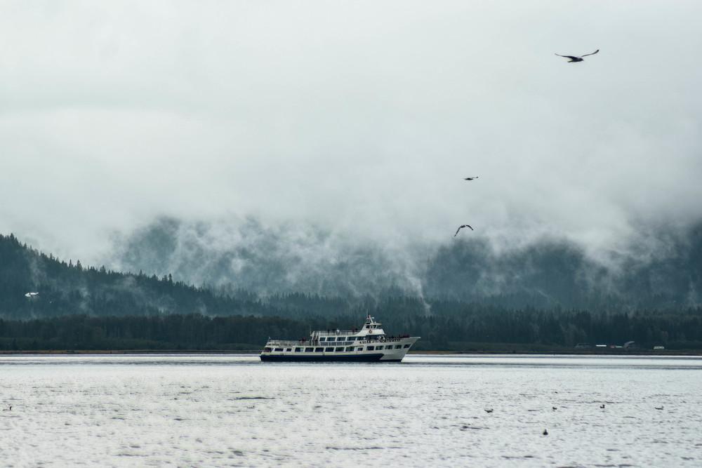 sewardboatbirds (1 of 1).jpg