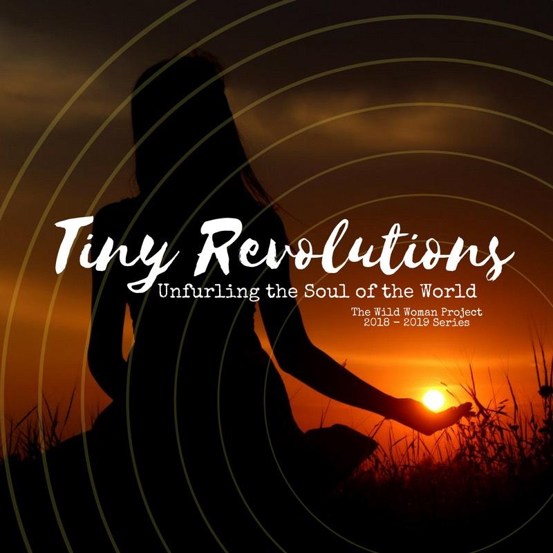 Tiny Revolutions