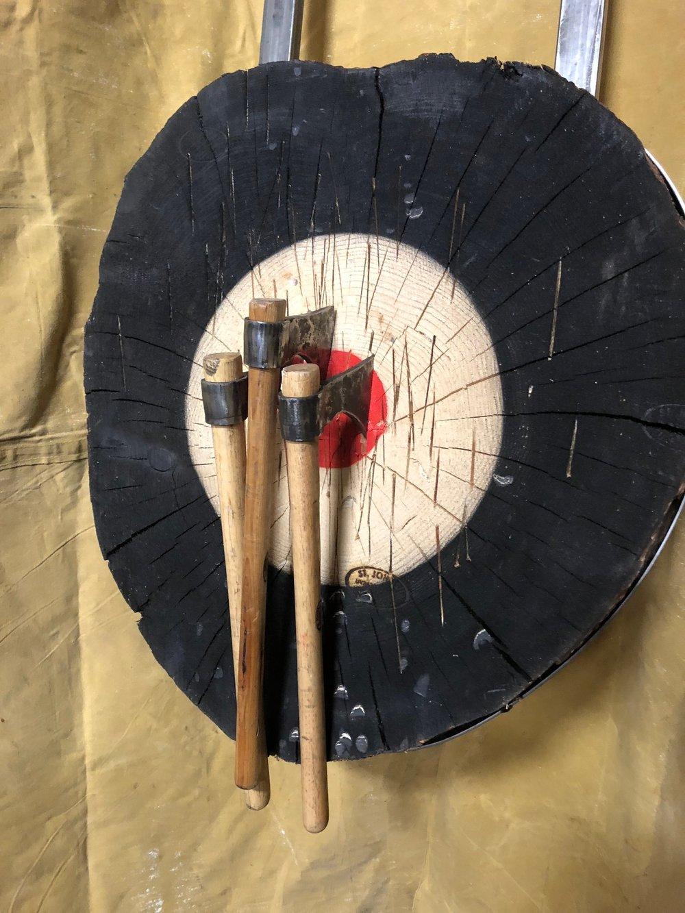 Custom Indoor Target For Fry Steel & Wood