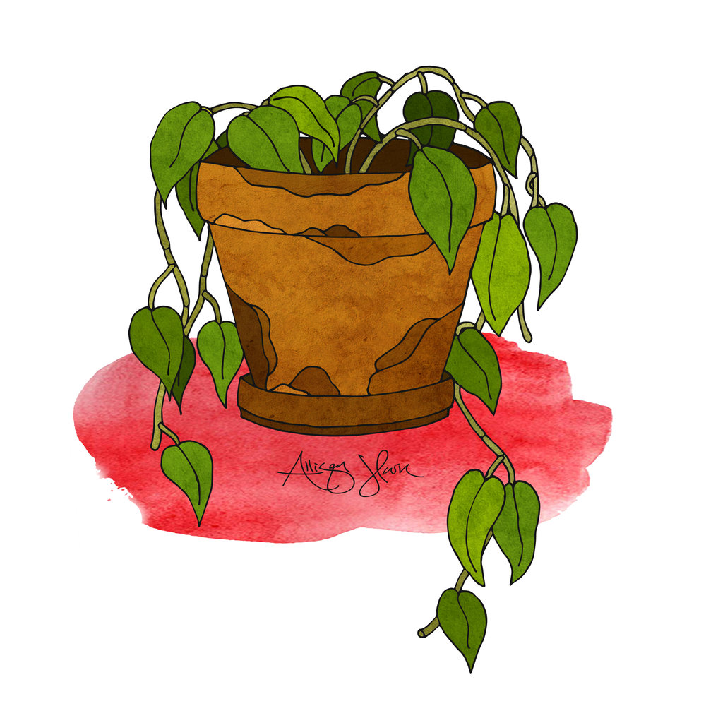 pottedplant2.jpg