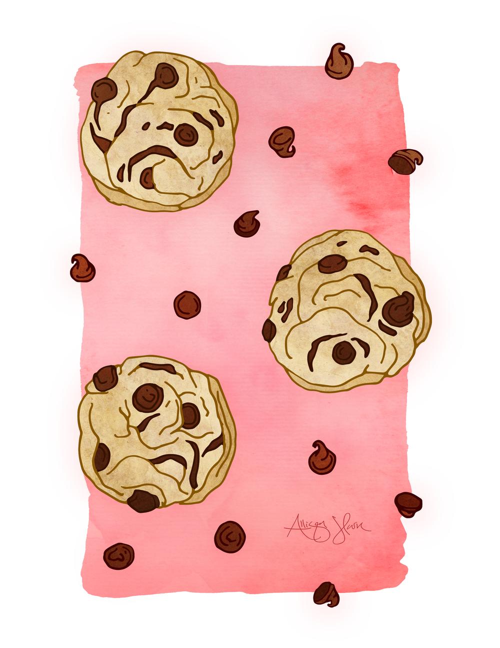 Chocolate_Chips.jpg