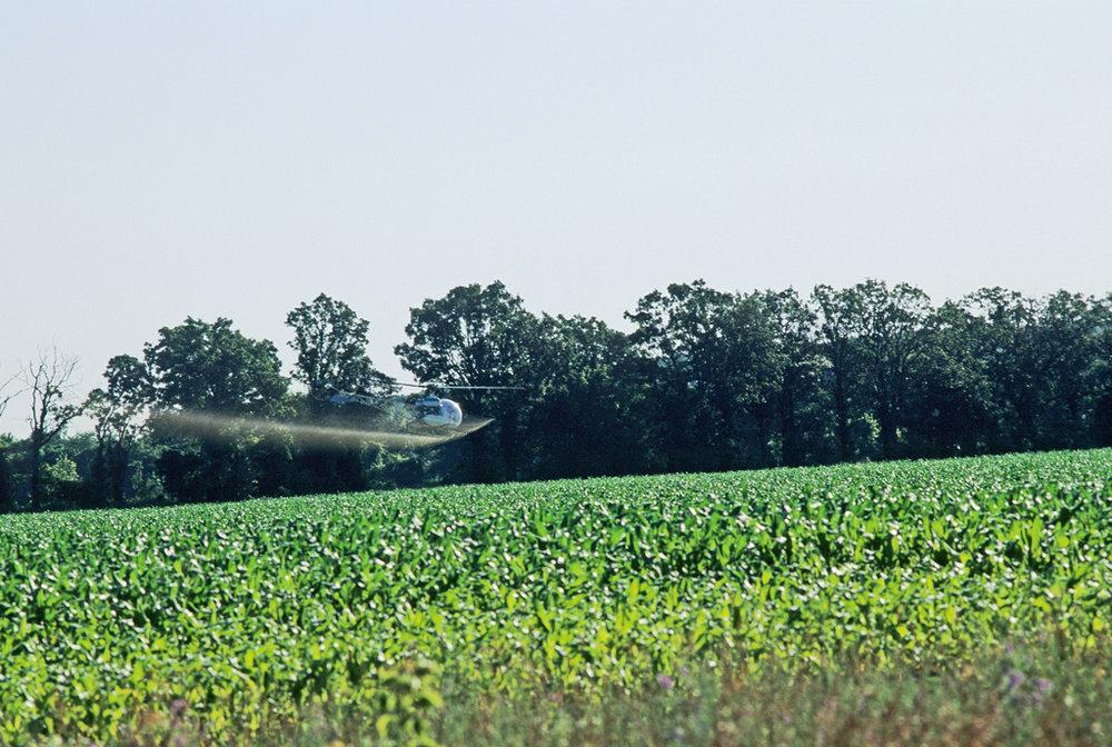 A Helicopter Sprays Pesticides
