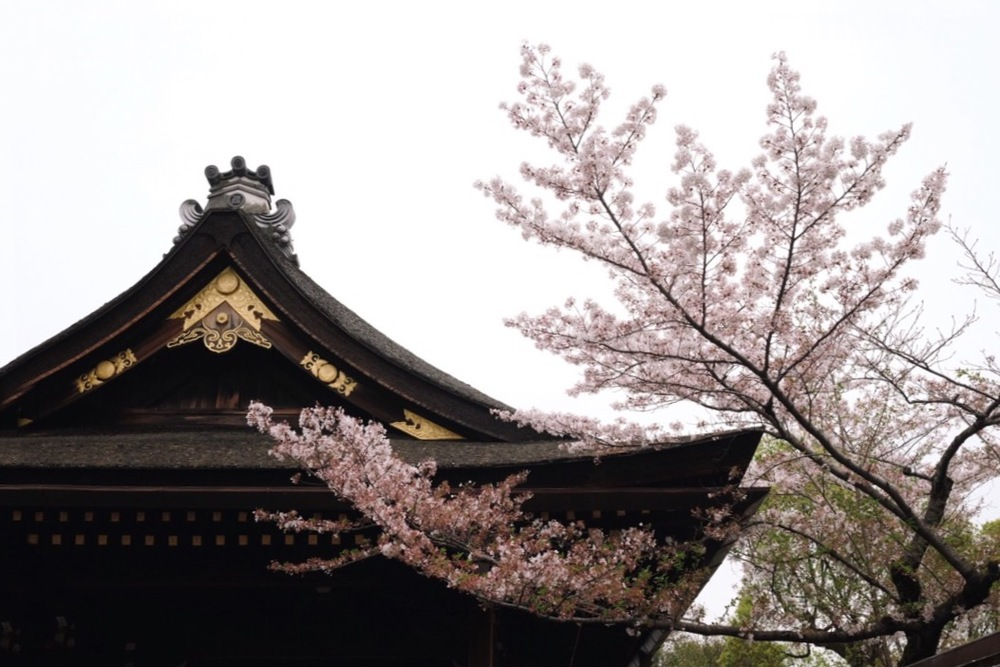 Fushimi Inari-taishashrine in Kyoto