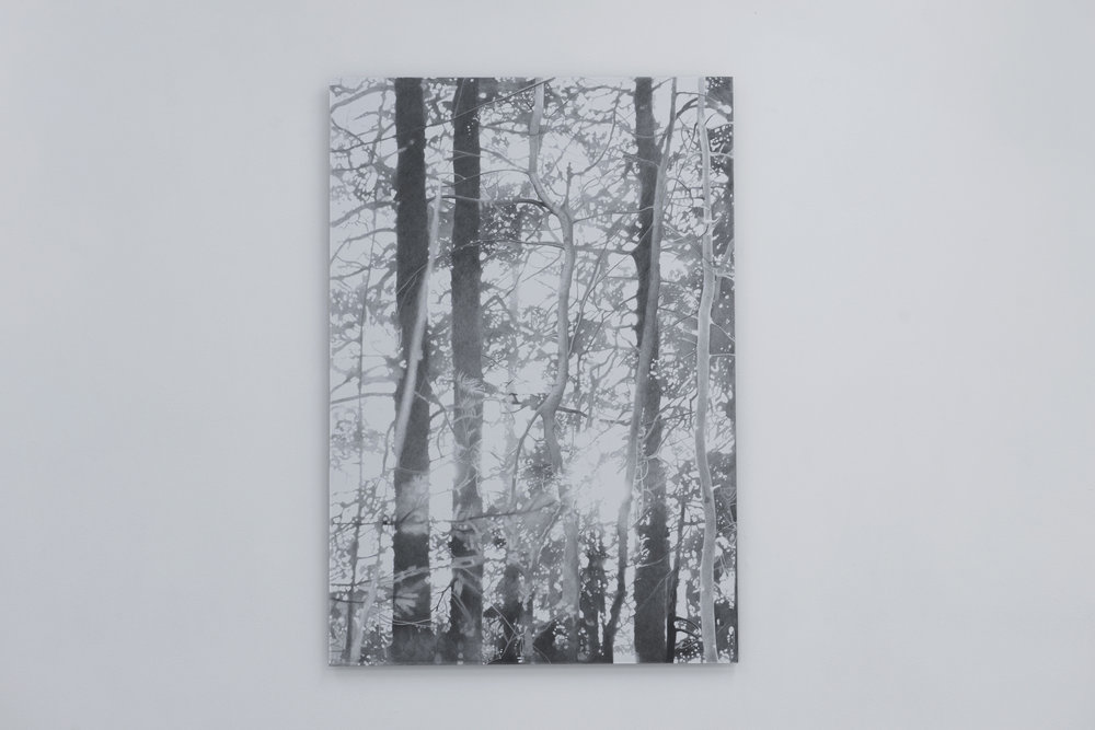 Solnedgang ved Lutvann , 2016 Blyant på papir montert på aluminium, 120 cm x 80 cm
