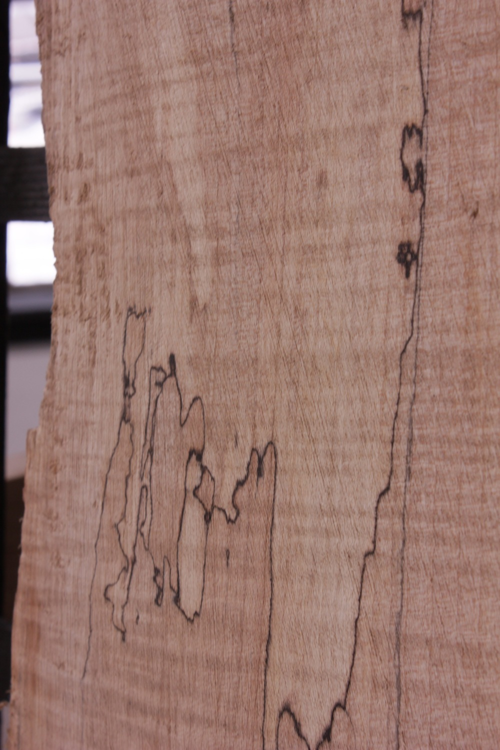 maple spalted.jpeg