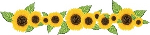 sunflower_banner_0515-0906-1201-4554_SMU.jpg