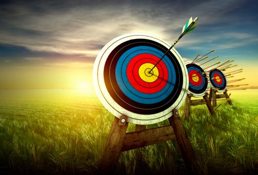 target-practice-530.jpg