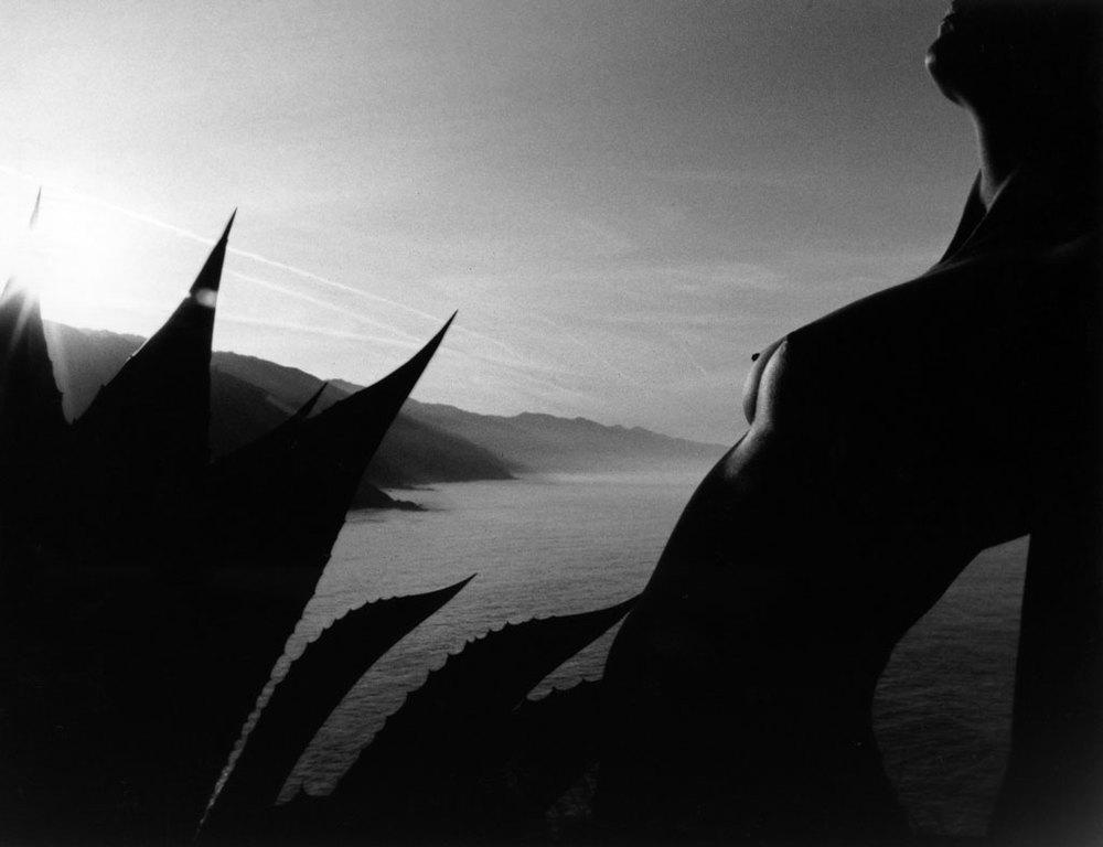 Roman Loranc Award | Nicole Mangiola Monterey Peninsula College