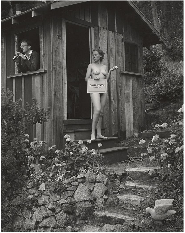My little grey home in the weston-edward weston.png