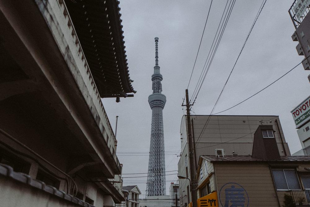 Japan-255.jpg