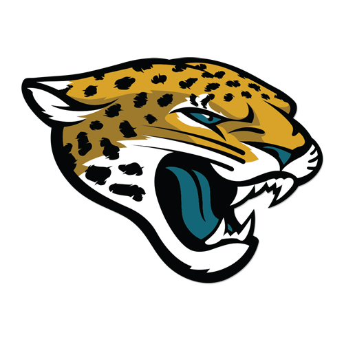Jacksonville Jaguars Naming Rights