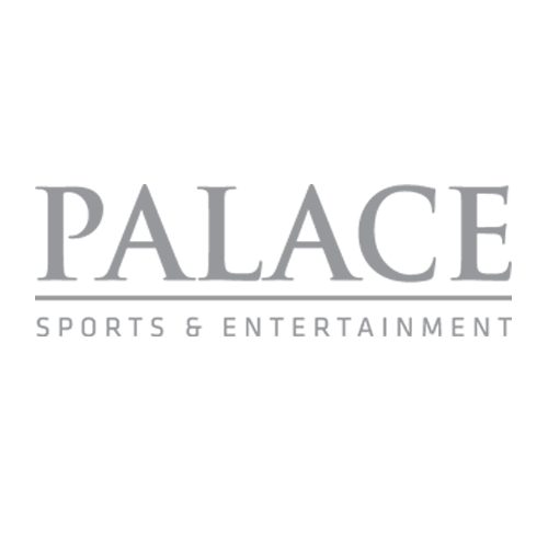 Palace Sports & Entertainment Sales Consulting, Naming Rights
