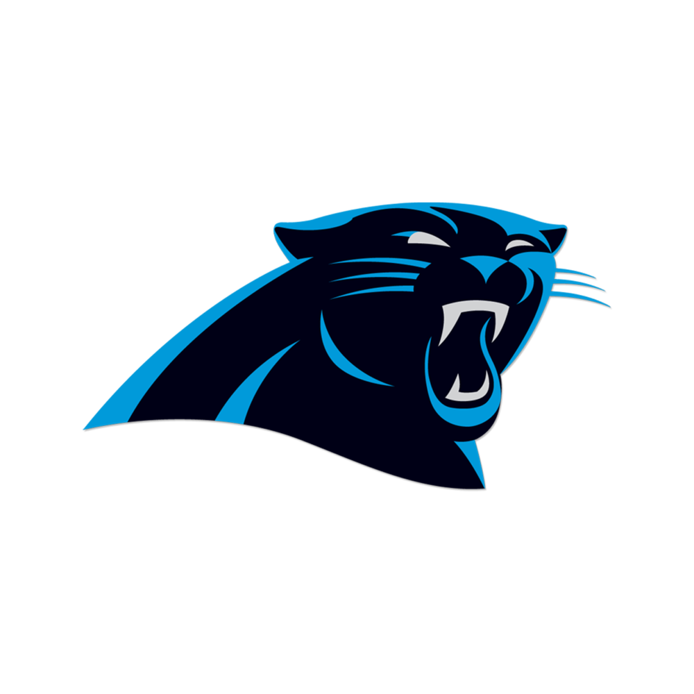 Carolina Panthers Naming Rights