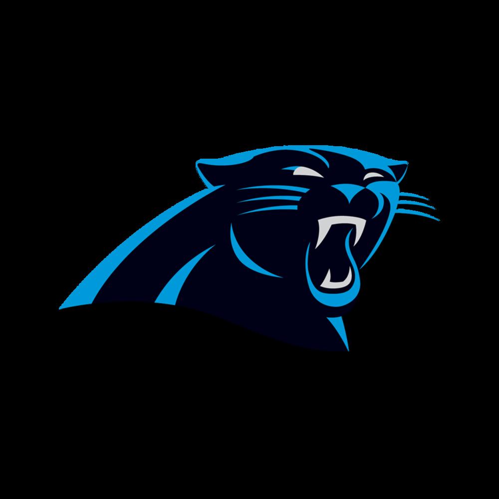 Carolina Panthers Naming Rights