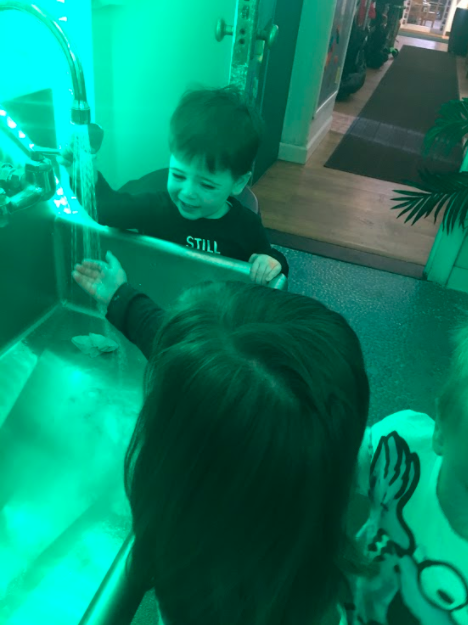 Dylan loves our field trips to the potty and washing his hands in the sink. It brings him so much joy. Potty explorations are a great tool in preparing our little learners for the actual potty milestones we plan on eventually achieving!