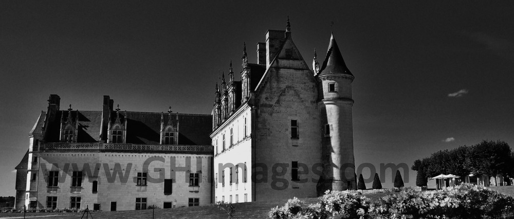Chateau d'Amboise_B&W_2015_(5WM).jpg