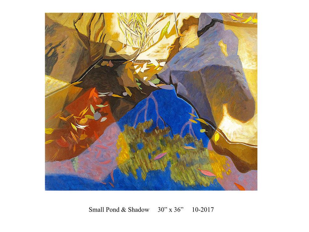 Small-Pond-&-Shadow-James-Burpee.001.jpg