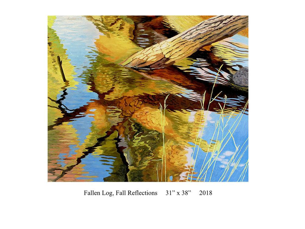 Fallen-Log-Fall-Reflections-James-Burpee.001.jpg