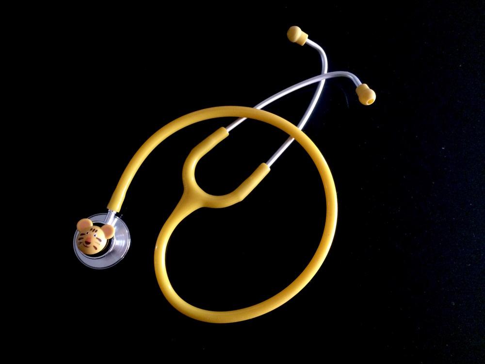 4. GWS Stethiscope.JPG