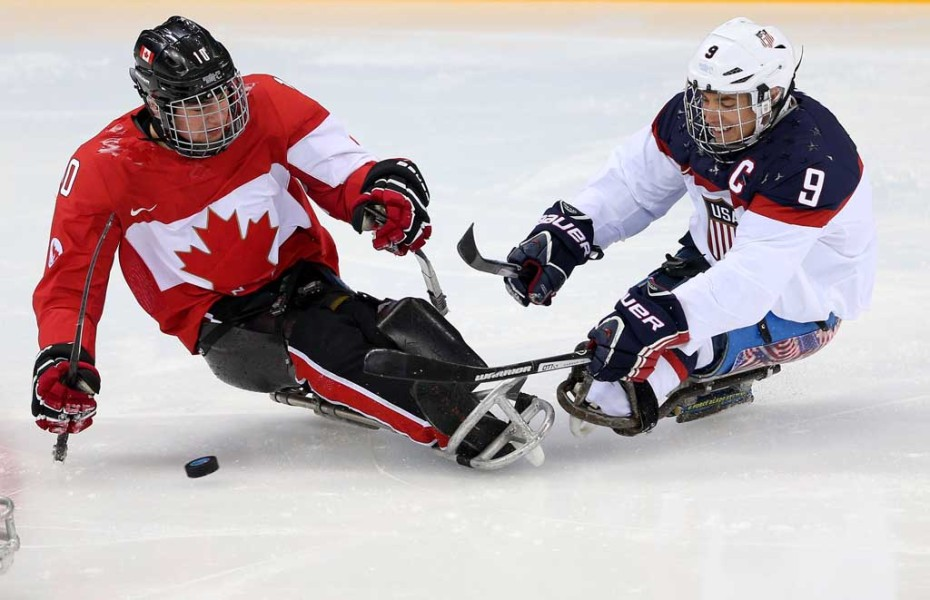 sledge hockey players