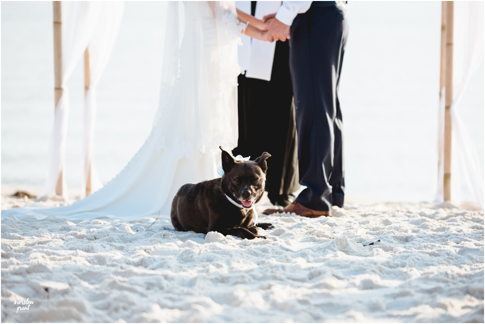 florida-wedding-photographer-kiersten-grant-photography241.jpg