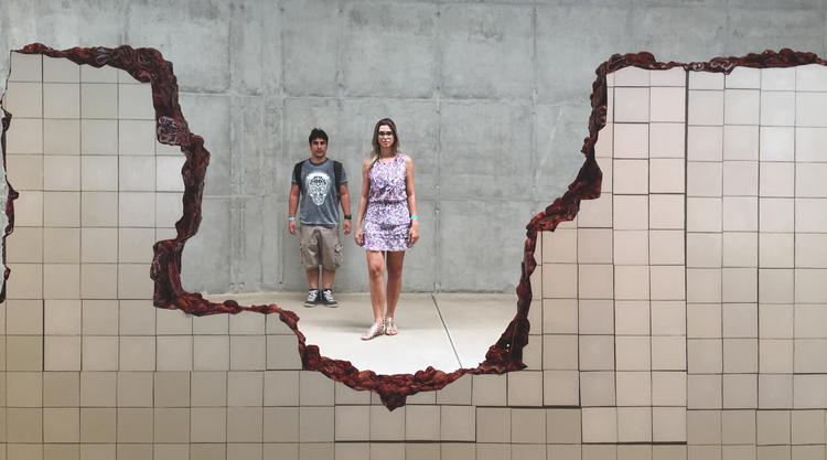 Galeria da Adriana Varejão