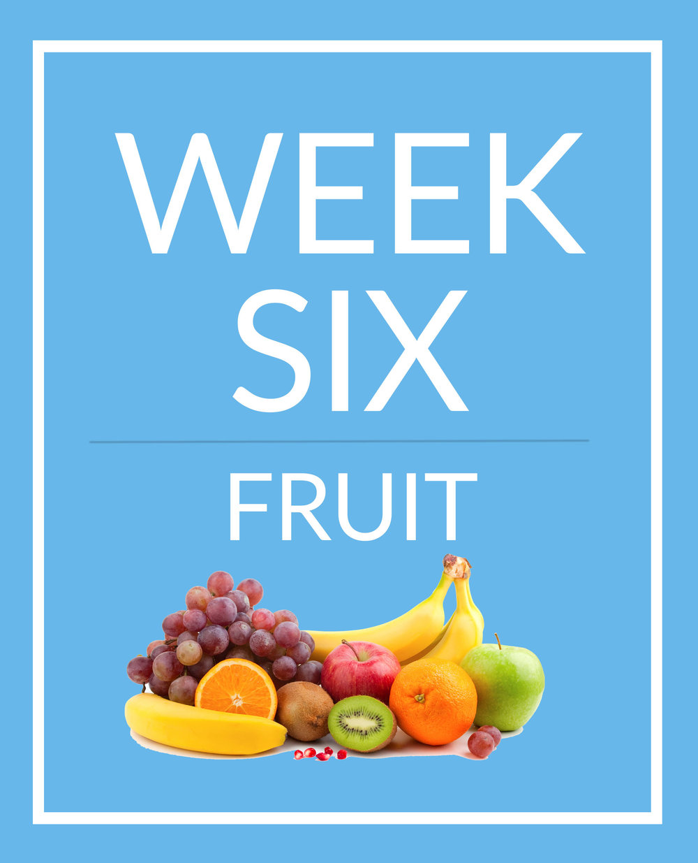 week six.jpg