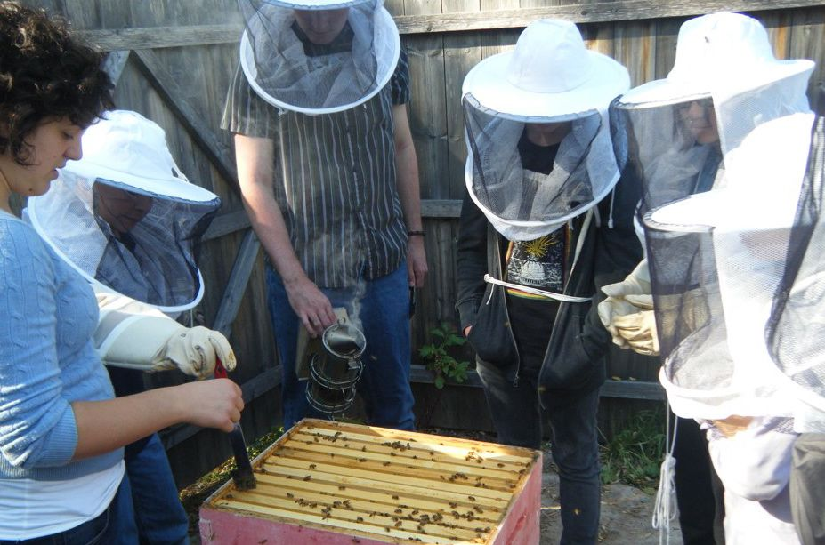 Visit with Princeton University's Bee Team