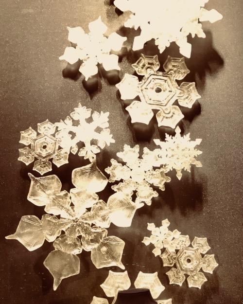 dec com snow flakes.jpg
