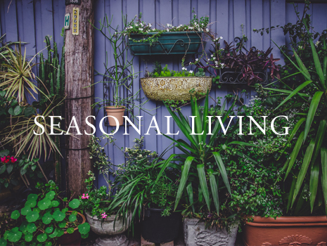 season-living