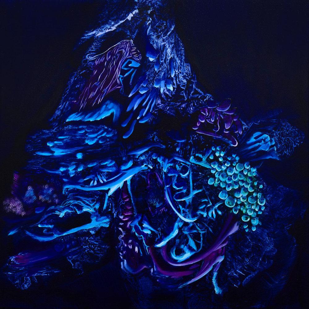 Stellar Reef