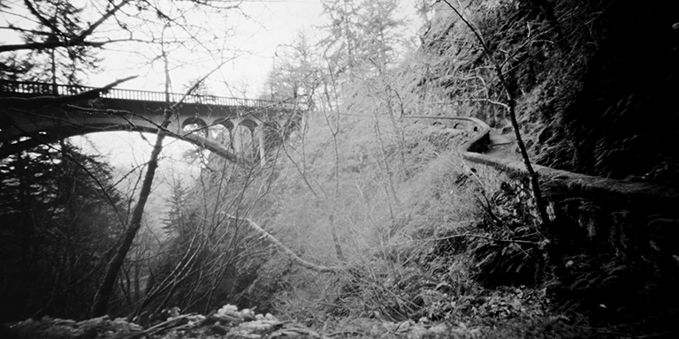 Shepperds Dell Trail.jpg