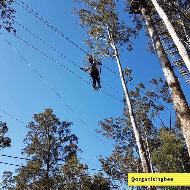 #dayinthelife Taking time out for the school holidays and stepping outside my comfort zone.  Yes, that's me up on the tight rope about 12 metres above the ground.  Oh, so much fun! I can't wait to do it again someday. ⠀ ⠀ #organisingbee #professionalorganiser #homeorganising #canberra #organisingfamilies #canberraorganiser #organisingmums #organisingcanberra #organise #conqueringfears #adventuretime