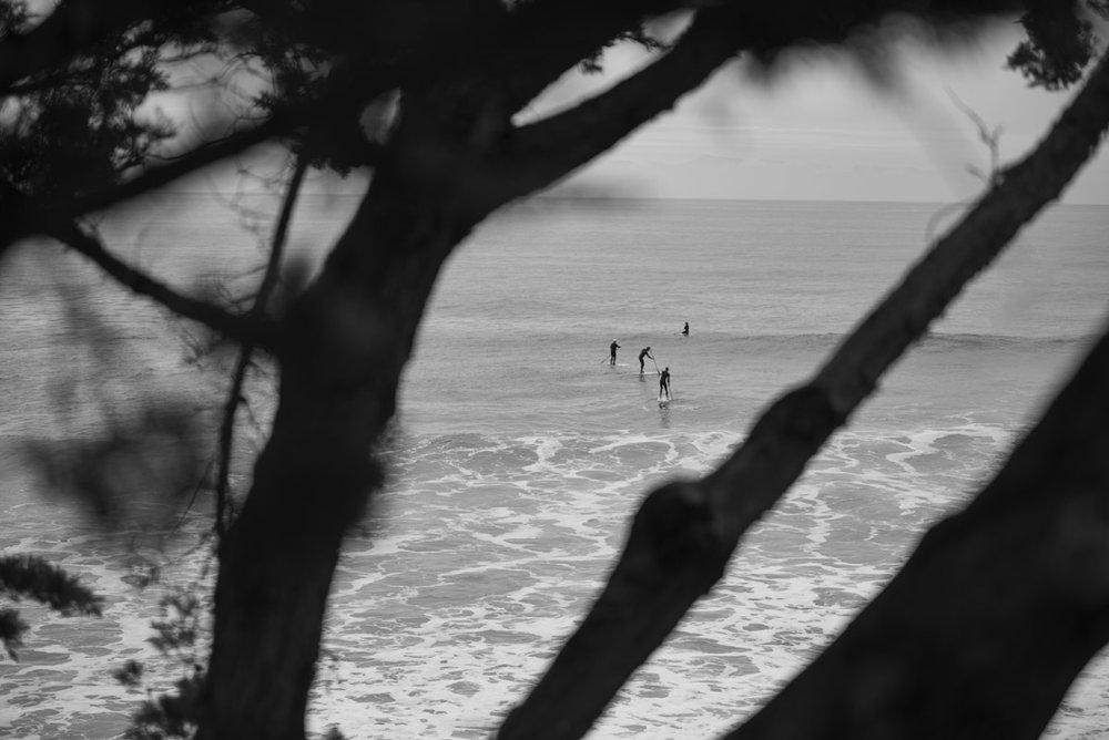 Lighthouse Point, Santa Cruz, CA. Nikon D810 /Tamron 70200. (c) 2017 - Steven Starr