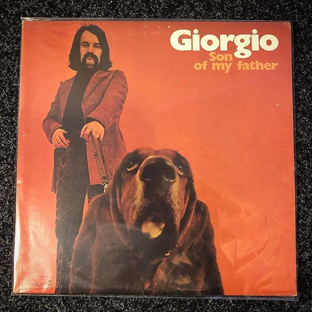 Deep Freeze Jams #giorgiomoroder #sonofmyfather #flashlightvinyl #eldiabloamps #recordstore #vinyl #cratedigger