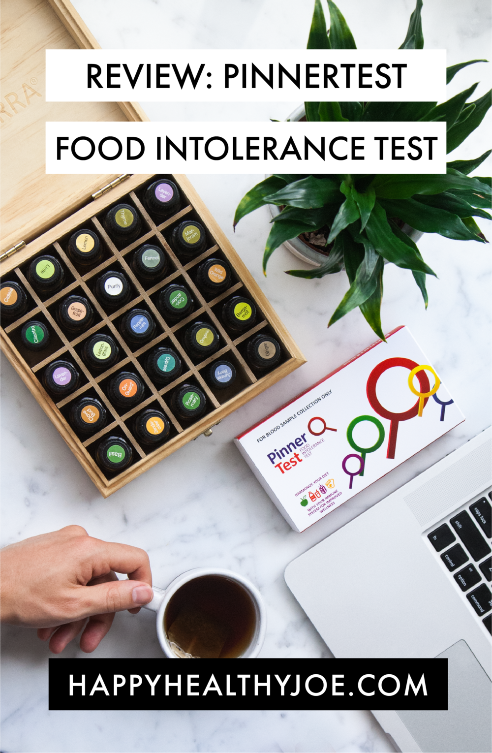 Pinnertest Food Intolerance Test Review: Allergies vs. Intolerances, My Results, & More!