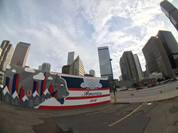 So-Gnar_Budweiser_America-Mural_Fish-Eye.jpg