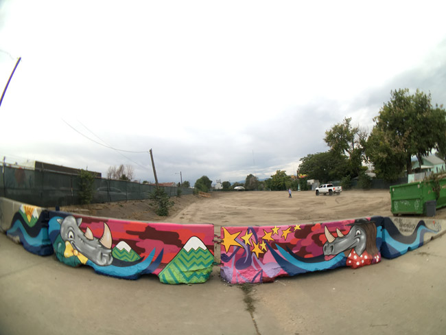 Pat-Milbery_Rino-Music-Festival_Barrier_Fish-Eye_Colorful-Art.jpg