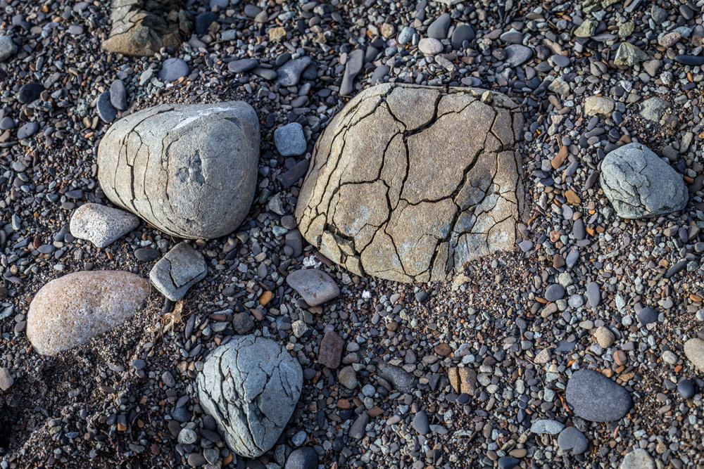 The young, fragile rocks on the beach.