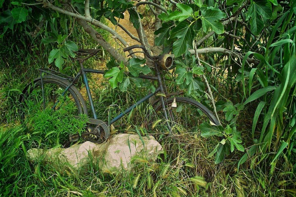 Old Bicycle at Safari Bar, Croatia