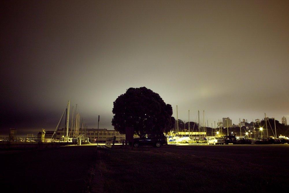 Fort Mason Marina