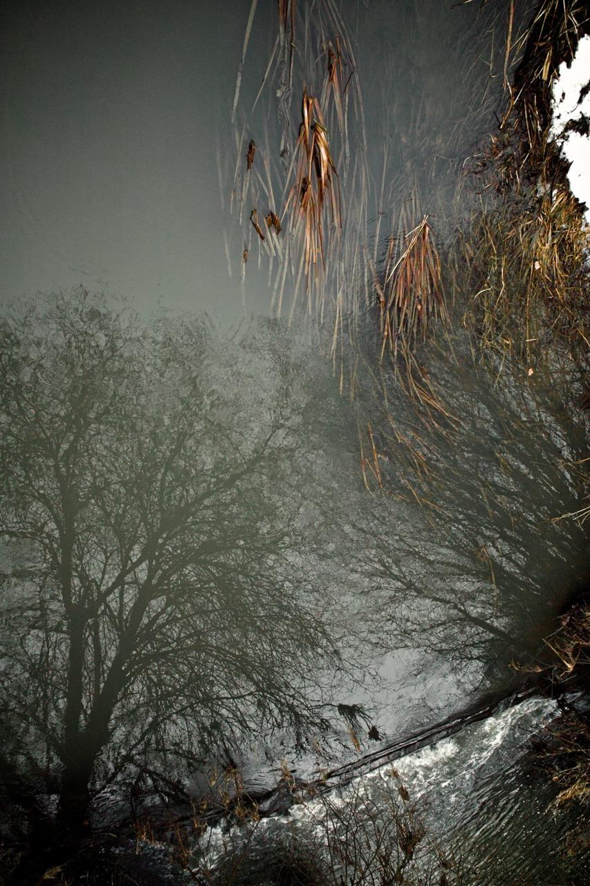 Chiddingstone-Penshurst Brook