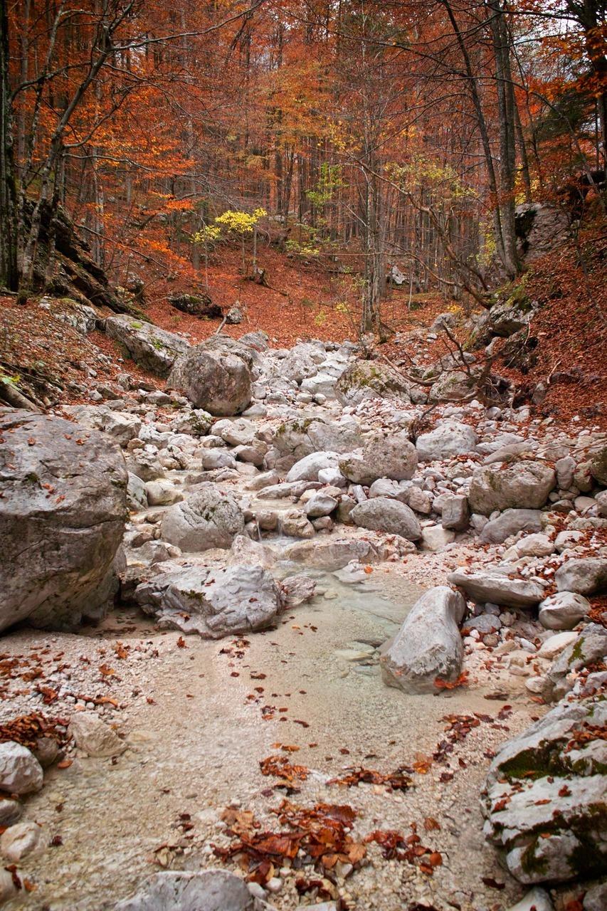 Logarska Dolina, Slap Rinka hike.