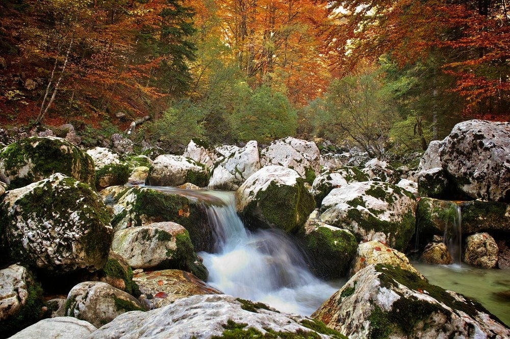 Bohinj, Slovenia.