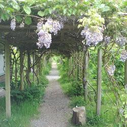 Strathcona Community Garden