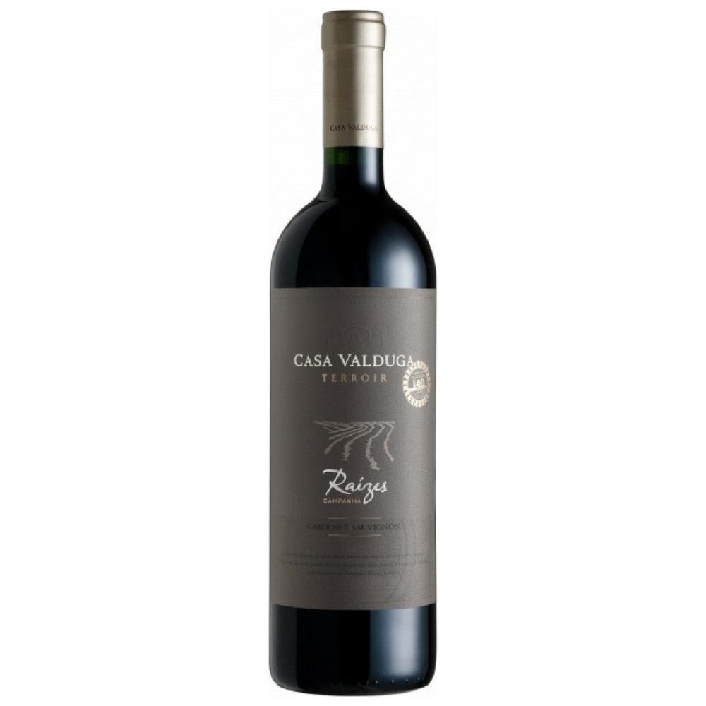 Casa Valduga Cabernet Franc Raizes 2012  Brazil - $32