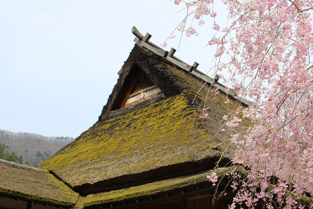 Kyoto private tours Traditional thatched roof