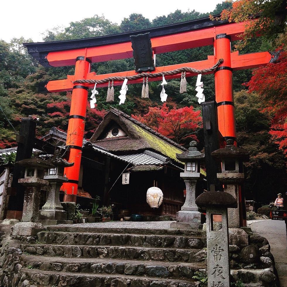 arashiyama-torii