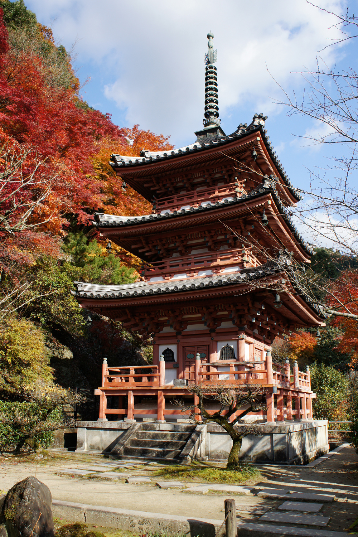 Mimurotoji_Uji_Kyoto_Pref10s3s4290.jpg